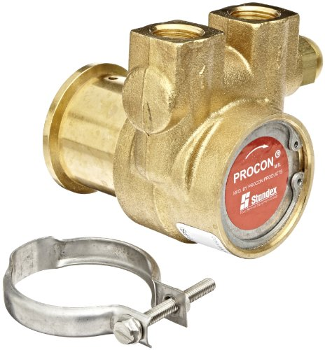 Procon 102A100F11PA Brass Rotary Vane Pump, 3/8