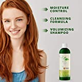Best Shampoo for Oily Hair Care - Natural Clarifying Shampoo for Oily Hair and Oily Scalp Care -...