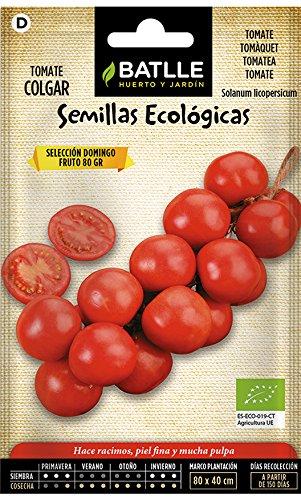 Semillas Ecológicas Hortícolas - Tomate Colgar - ECO - Bat