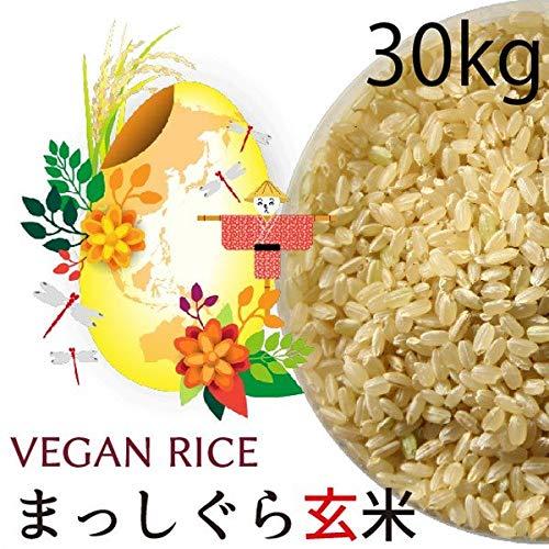 【令和元年産】まっしぐら 玄米 30kg 木村秋則式自然栽培 青森産【酵素玄米】米 無農薬・無肥料 放射性物質検査済