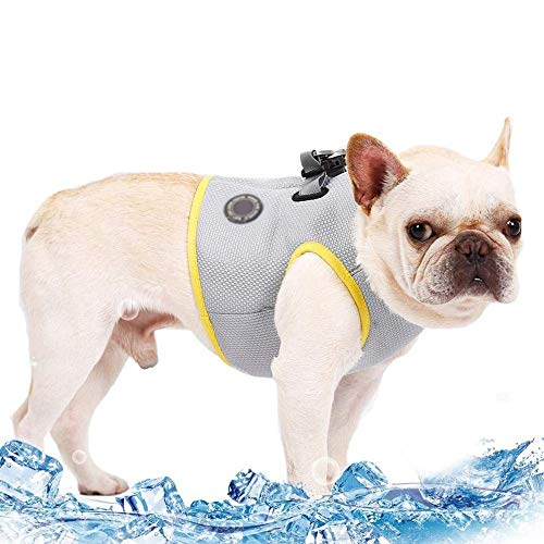 Coole Weste, Hundekühlweste, Prestige Harness Outdoor Welpenkühler Jacke Sicherheit Haustier Jagdmantel, am besten für kleine mittelgroße Hunde,M