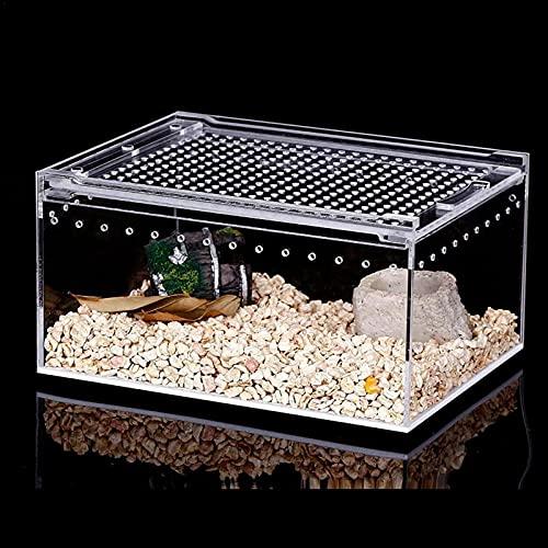 Mini Terrario Insetti,scatola Di Alimentazione Per Insetti Per Insetti Di Allevamento Per Rettile Terrario Habitat Per Spide, Lucertola, Scorpion, Cen