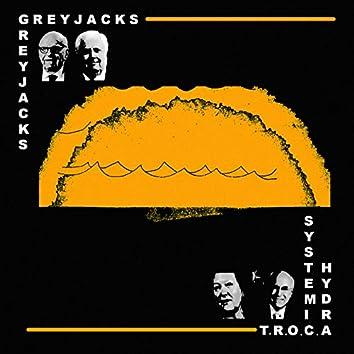 T.R.O.C.A (Systemic Hydra)