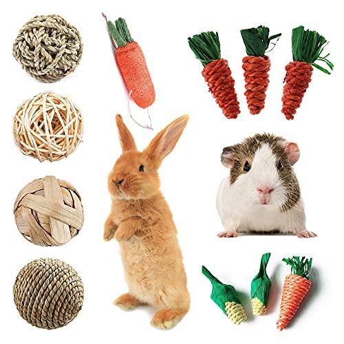 SKXZK 11 Piezas Juguetes para Masticar Conejo Bola de Hierba de Molares de Animales Pequeños, Pastel de Hierba Zanahoria Juguetes para Conejos Enanos, Chinchillas, Hámsters, Cobayas