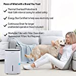 Honeywell Basement & Small Room Up to 1000 Sq. Ft, TP30AWKN Smart Wi-Fi Energy Star Dehumidifier, 30 Pint, White 19 POWERFUL DEHUMIDIFIER FOR ROOMS UP TO 4000 SQUARE FEET: This powerful beast effectively removes up to 70 pints of moisture from the air (50-Pint 2019 DOE Standard) to protect walls, curtains, furniture and appliances from excess household moisture. Ideal for large basements, living rooms, cellars, and storage rooms. PEACE OF MIND WITH A BRAND YOU TRUST: Honeywell Dehumidifiers are top rated by an independent, US-based product safety-testing agency since 2016 and all Honeywell Dehumidifiers are backed by an outstanding warranty. Plus, if you ever need help, the Honeywell Home Comfort customer service hotline connects you directly to an in-house customer support team who are ready to help (during office hours). SMART & VERSATILE: Wi-Fi-Enabled and compatible with Amazon Alexa voice commands, the Honeywell Smart Dehumidifier can be controlled from almost anywhere. Change humidity and fan-speed settings without moving away from your busy routine.