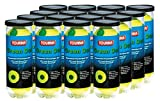 Tourna 12 Pack Pressurized Green Dot Tennis Balls in a Pressurized Can, USTA Approved