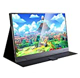 Ever Lustre 18.4 Inch USB Portable Monitor 4K IPS Gaming Monitor W/Type C Build-in Batteries for Laptop PS3 PS4 Xbox ONE Xbox 360 Switch (Battery+Leather case)