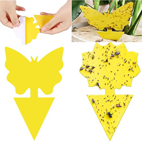 (48 PCS) Sticky Trap, Natural Fruit Fly and Gnat Trap Yellow Sticky Bug Traps for Indoor/Outdoor Use, Insect Catcher for White Flies, Mosquitos,Fungus Gnats, Flying Insects, Disposable Glue Trappers