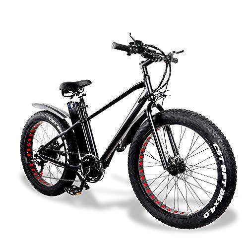 E-Bike Herren Elektrofahrrad Mountainbike Fatbike 26 Zoll 750W Moto 48V 20A 2*Batterie 7 Gang