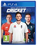 Cricket 19 The Official Game of the Ashes Review (PS4)