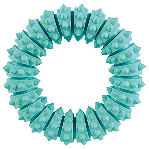 Trixie 33181 Denta Fun Ring, Mintfresh, Naturgummi, ø 12 cm