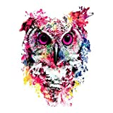 DIY 5D Diamond Painting by Number Kits, Painting Cross Stitch Full Drill Crystal Rhinestone Embroidery Pictures Arts Craft for Home Wall Decor Gift Colorful Owl (J4997-11.8X11.8in)