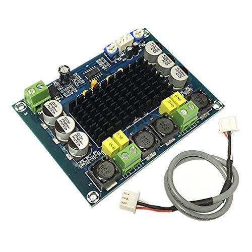 Morza De Dos Canales estéreo Digitales de Alta Potencia del Amplificador de Potencia de Audio Audio Board Junta Amplificador estéreo Digital de 2 x 100W