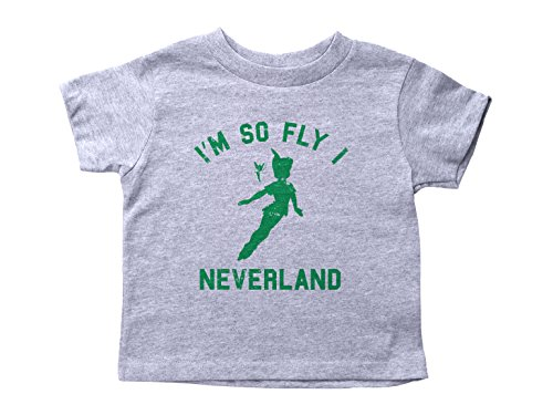 Peter Pan Inspired Toddler Shirt/Neverland/Unisex Crew Neck Kids Tee (3T, Grey)