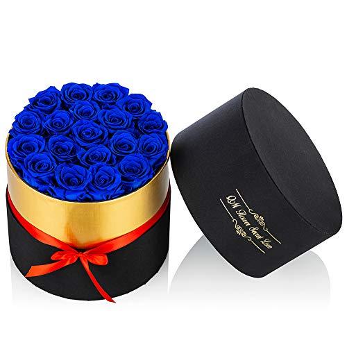 Nuptio Handgemachte Konservierte Rosen Ewige Rosen in Einer Schachtel Echte Blumen für Immer Rosenschachtel, Langlebige Rosen Geschenk für Valentinstag Hochzeit Thanksgiving (19 Stück Rosen)