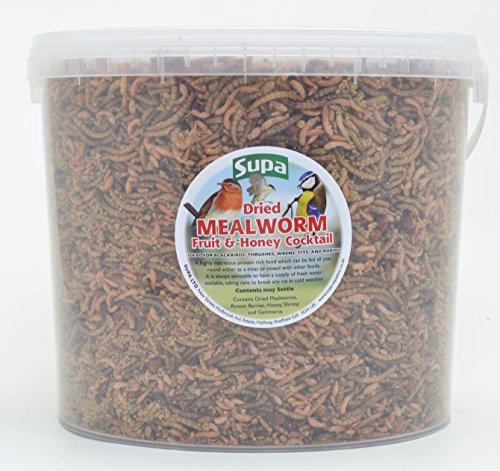 Supa Dried Mealworm, Fruit & Honey Cocktail Mix for Wild Birds, 5 Litre Bucket | High Energy Protein Rich Treat For Garden Birds | Attract More Birds To Your Garden | Quality Wild Bird Food
