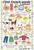 Laminated First French Words Learn The Alphabet in French Mini Poster 40x60cm
