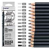 Lot de 14 crayons à dessin en graphite gradués 8B, 7B, 6B, 5B, 4B, 3B, 2B, B, B, HB, F, H, 2H, Kit de fournitures artistiques professionnels pour enfants, étudiants, débutants et artistes