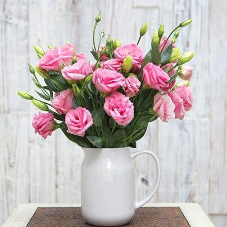 200pcs rares graines blanches Eustoma vivaces plantes à fleurs Balcon fleurs en pot Graines Lisianthus violet pour planteur de pot de fleurs 5