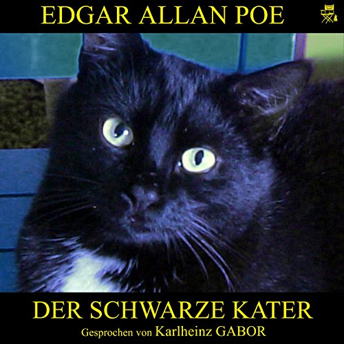 Der schwarze Kater audiobook cover art