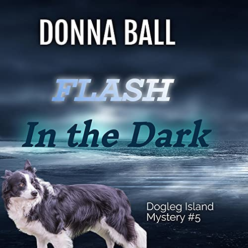 Flash in the Dark Audiobook By Donna Ball cover art