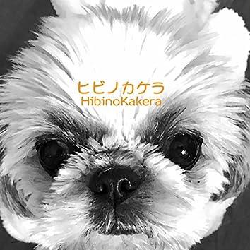 ヒビノカケラ Vol.10