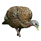 Best Turkey Decoys - Avian-X Feeder Hen Turkey Decoy, Lifelike Collapsible Decoy Review