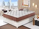 Moisury Colchón viscoelástico EVO | Colchón de 30 cm de Grosor |2 centímetros de viscoelástica | Colchón de firmeza Media | 5 Capas de Espumas Premium | (140x190)