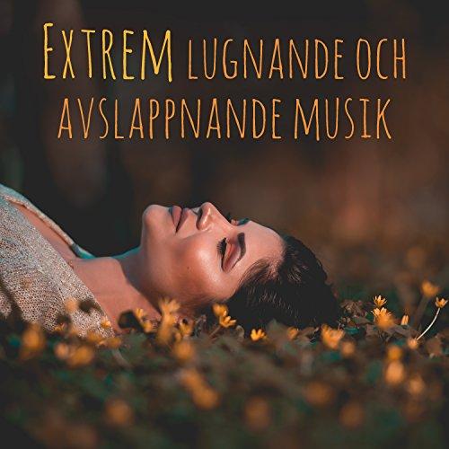 Extrem lugnande och avslappnande musik: 60 spår för yoga, sömn, meditation, studier, terapi och avkoppling