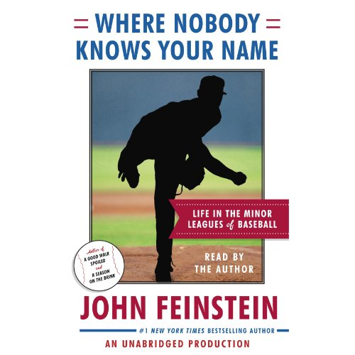 Where Nobody Knows Your Name audiobook cover art