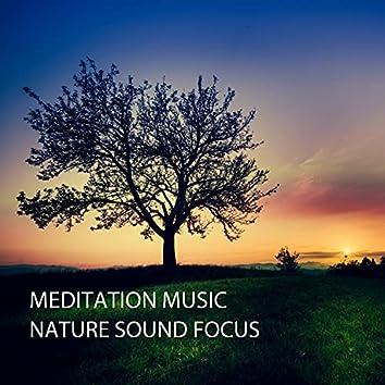 Meditation Music: Nature Sound Focus