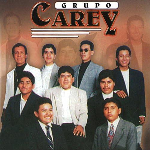 Grupo Carey