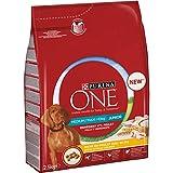 Purina ONE Medium/Maxi  10 kg Croquetas Perro Junior Rico en Pollo con arroz, 4 Bolsas de 2,5 kg Cada una
