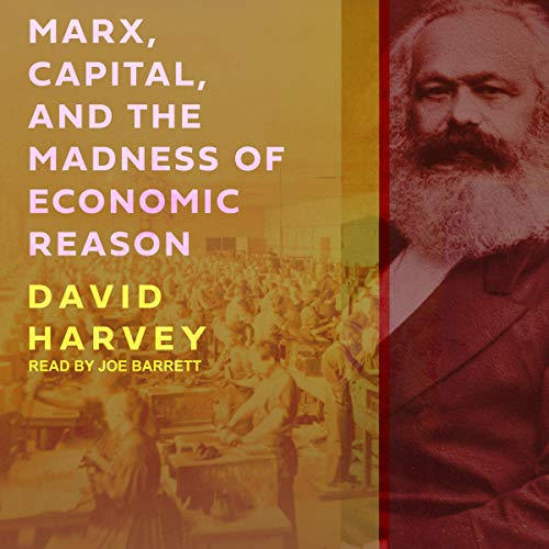 Page de couverture de Marx, Capital, and the Madness of Economic Reason