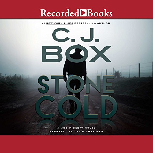 Stone Cold: Joe Pickett, Book 14 audiobook cover art