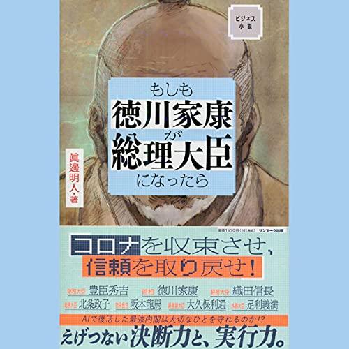 『ビジネス小説 もしも徳川家康が総理大臣になったら』のカバーアート