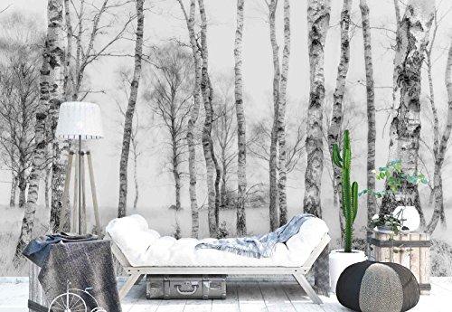 Vlies Fototapete Fotomural - Wandbild - Tapete - Birkenbaumstämme Wald - Thema Wald und Bäume - XL - 368cm x 254cm (BxH) - 4 Teilig - Gedrückt auf 130gsm Vlies - 1X-1211795V8