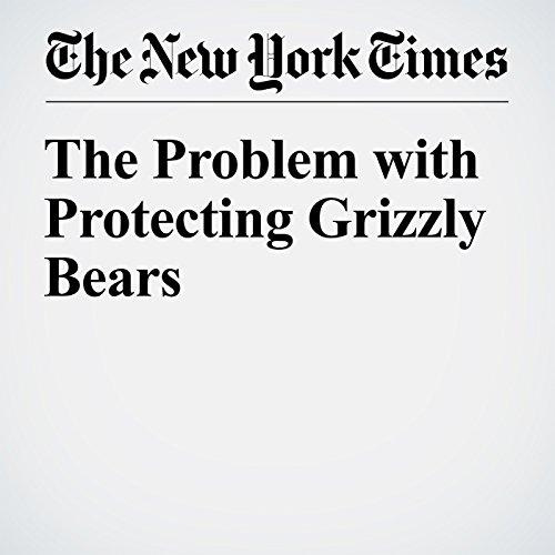 The Problem with Protecting Grizzly Bears audiobook cover art