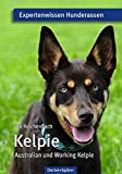 Kelpie: Australian und Working Kelpie