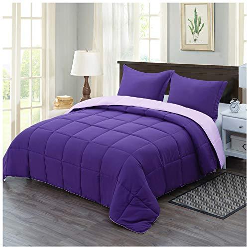 Homelike Moment Lightweight Comforter Set Queen Purple Reversible All Season Down Alternative Bed Comforter Set Summer Blanket 3 Piece - 1 Comforter 2 Pillow Shams Full Queen Size Plum / Light Purple