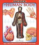 Uncover the Human Body: An Uncover It Book (Uncover Books)