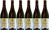 Hubert Lay Spätburgunder Rotwein SL Naturwein schwefelfrei, unfiltriert, naturtrüb 2016 Trocken Ecovin Bio (6 x 0.75 l)