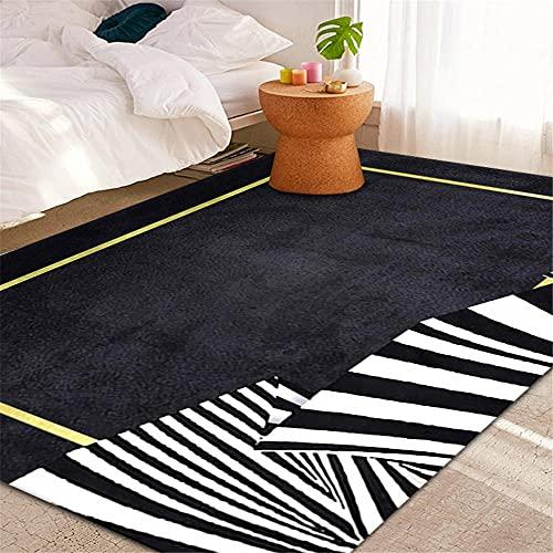 RUGMRZ Alfombra Habitacion Juvenil Línea de Moda de Metal Pesado Moderno Sala de Estar geométrica Geométrico Alfombra Grande Ruido reducido alfombras de Pelo Corto Lavable y67X220CM/2ft 2''X7ft 3''