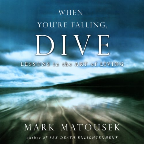 The When You're Falling, Dive audiobook cover art