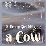 A Pretty Girl Milking a Cow