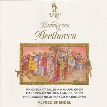 Beethoven: Piano Sonatas No. 28, Op. 101, No. 30, Op. 109 & No. 31, Op. 110