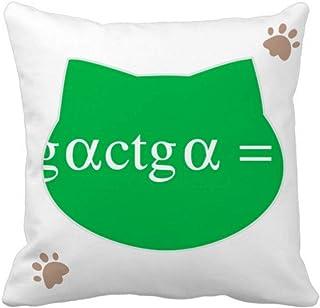 OFFbb-USA Fórmula matemática de representación de computación multiplicación gato manta almohada cuadrada