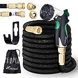 TRESKO Expandable Garden Water Hose Pipe- 8-Pattern Spray Gun Anti-leakage with Brass Fittings, Triple Latex Core & Hose Hook/Hanger, Magic-hose pipes (100FT)