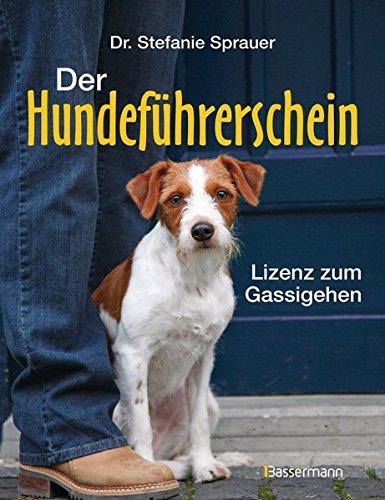 Der Hundeführerschein: Lizenz zum Gassigehen