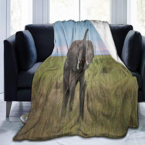Popcorn In Spring Home Decke König der Domäne Antistatische Nap-Decke Fleece-Decke Thermische Überwurf-Schlafdecken für Schlafsofa-Couch